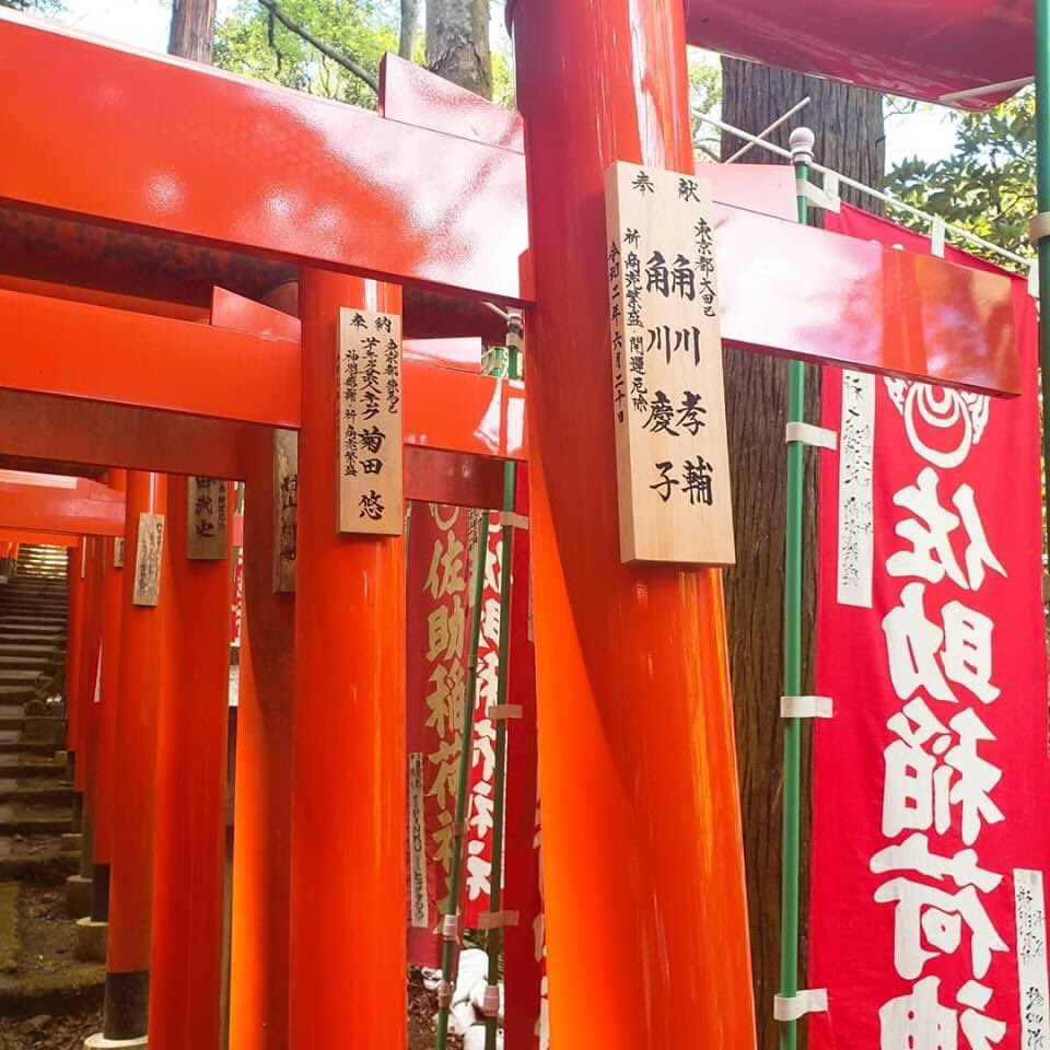 慶子 角川