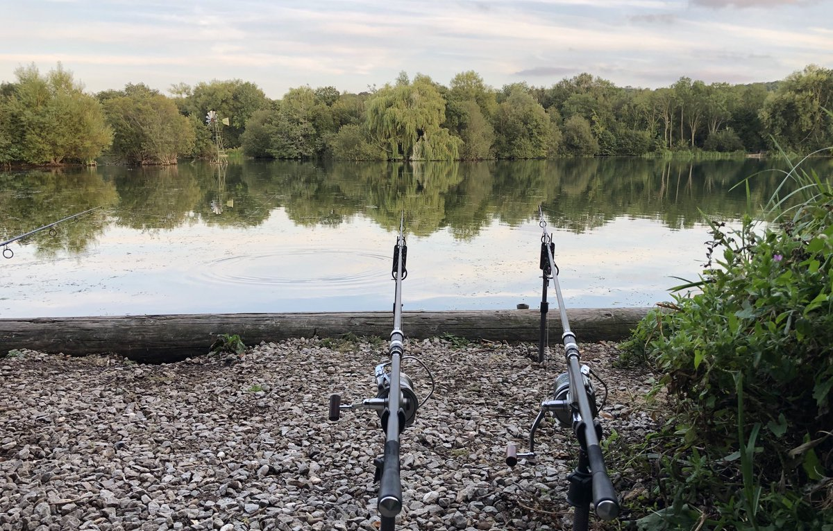 Arrived early this <b>Morning</b>, looking good for a fish or two 🤞#carp #carpfishing https://t.c