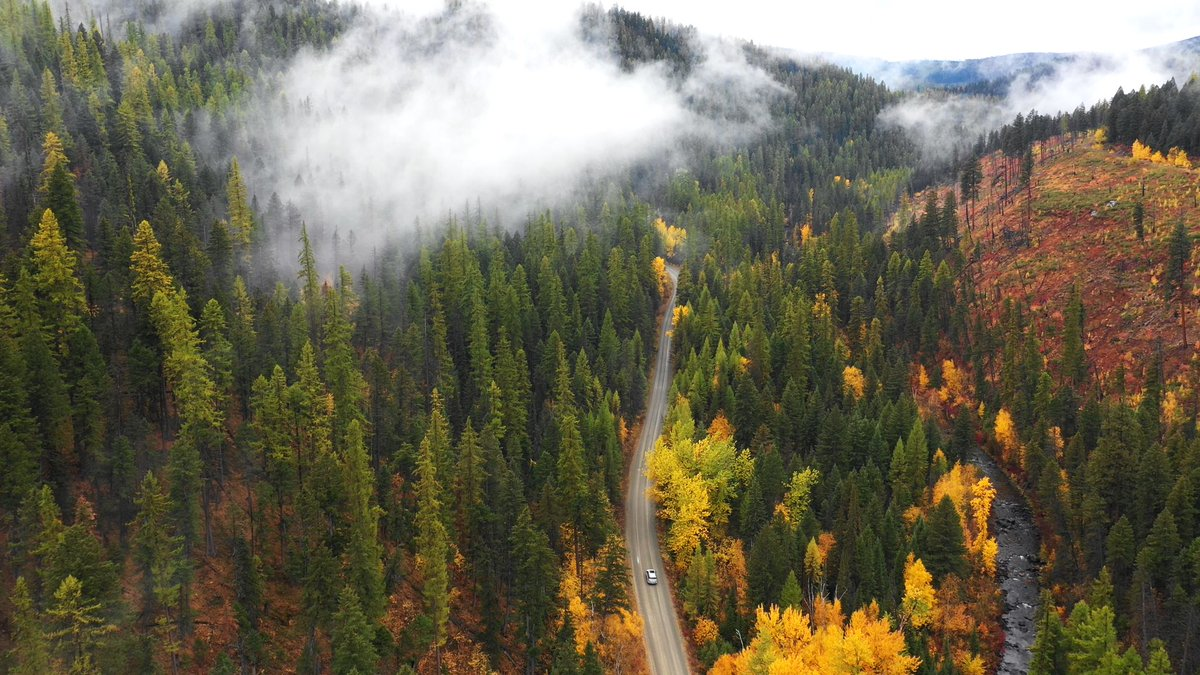 Some say summer is the crowning season in Montana. Let them say what they will...all we know is that fall is giving us ALL the feels. #DiscoverKalispell #Montana #GlacierMT #FallTravel
