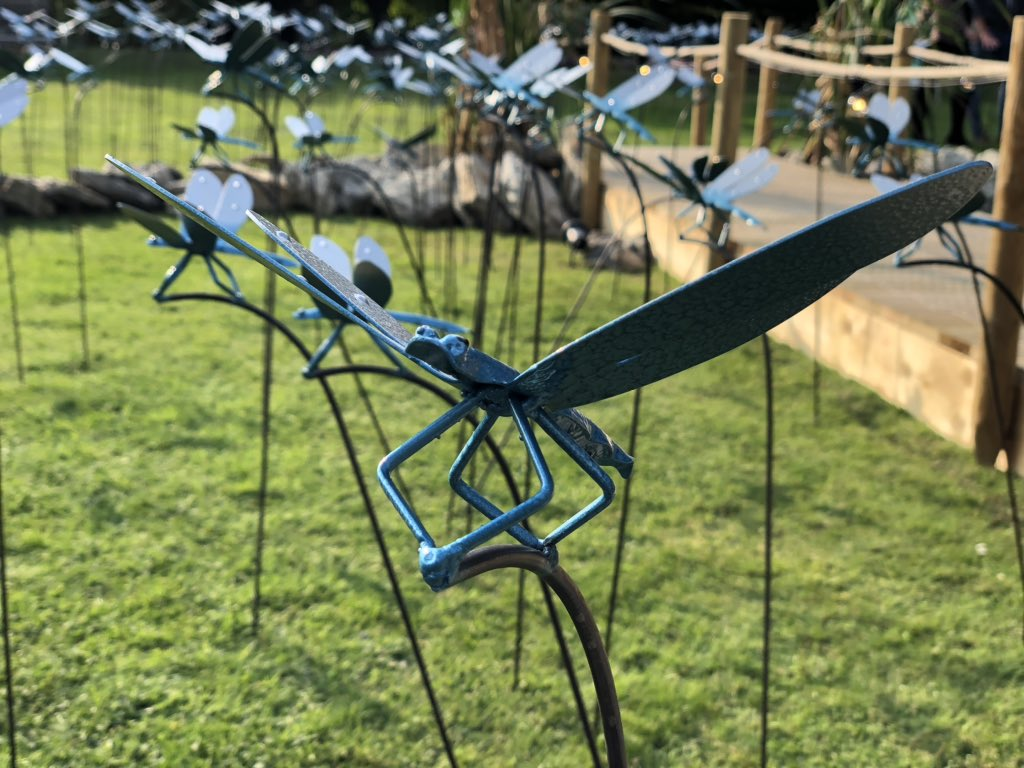 test Twitter Media - On @itvcalendar tonight at 6 @emmawilkitv talks with @WarwickADavis about @StBarnabasLinc dragon fly garden, tune in for more https://t.co/6ufI9sBt9Y