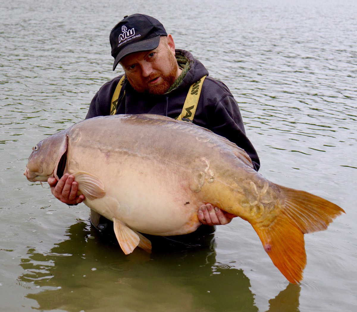 How do you like them apples #fishing #<b>Carpy</b> #carpfishing https://t.co/AttzqojYMy