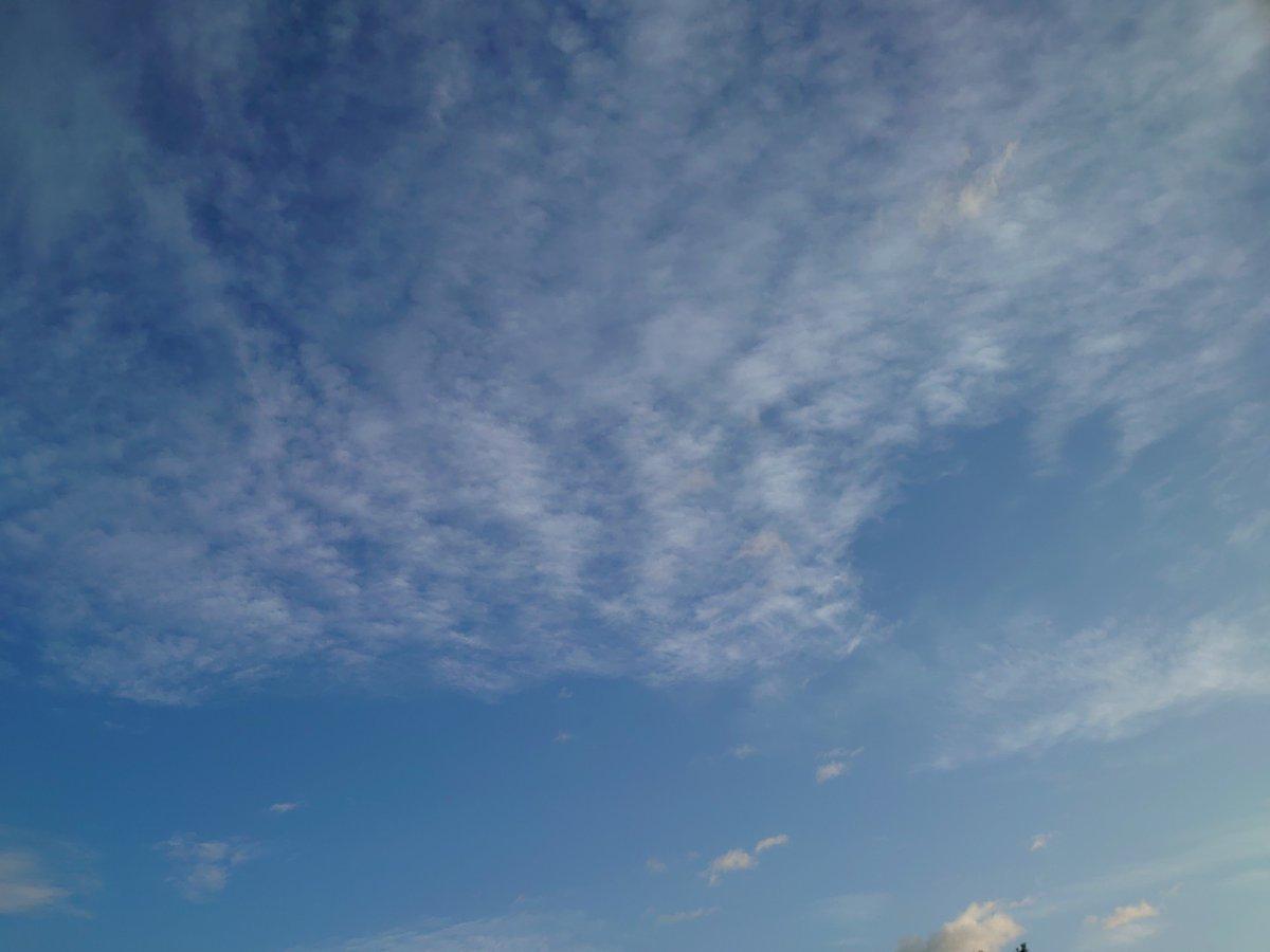 test ツイッターメディア - おはようございます!青空に高層雲が広がり佐久市は良い天気です。小田井付近の気温は18℃、風はありません。週末に向けて少し天気は下り坂・・。庭の花々も、そろそろおしまいです(^。^;) https://t.co/zzAq9vHEaN