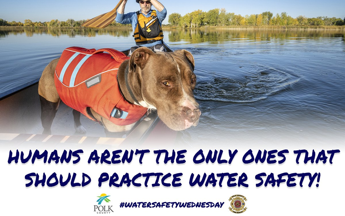 You aren't the only one that needs to practice safety around water. @PolkFire reminds you to make sure your pets are safe too!  #WaterSafetyWednesday