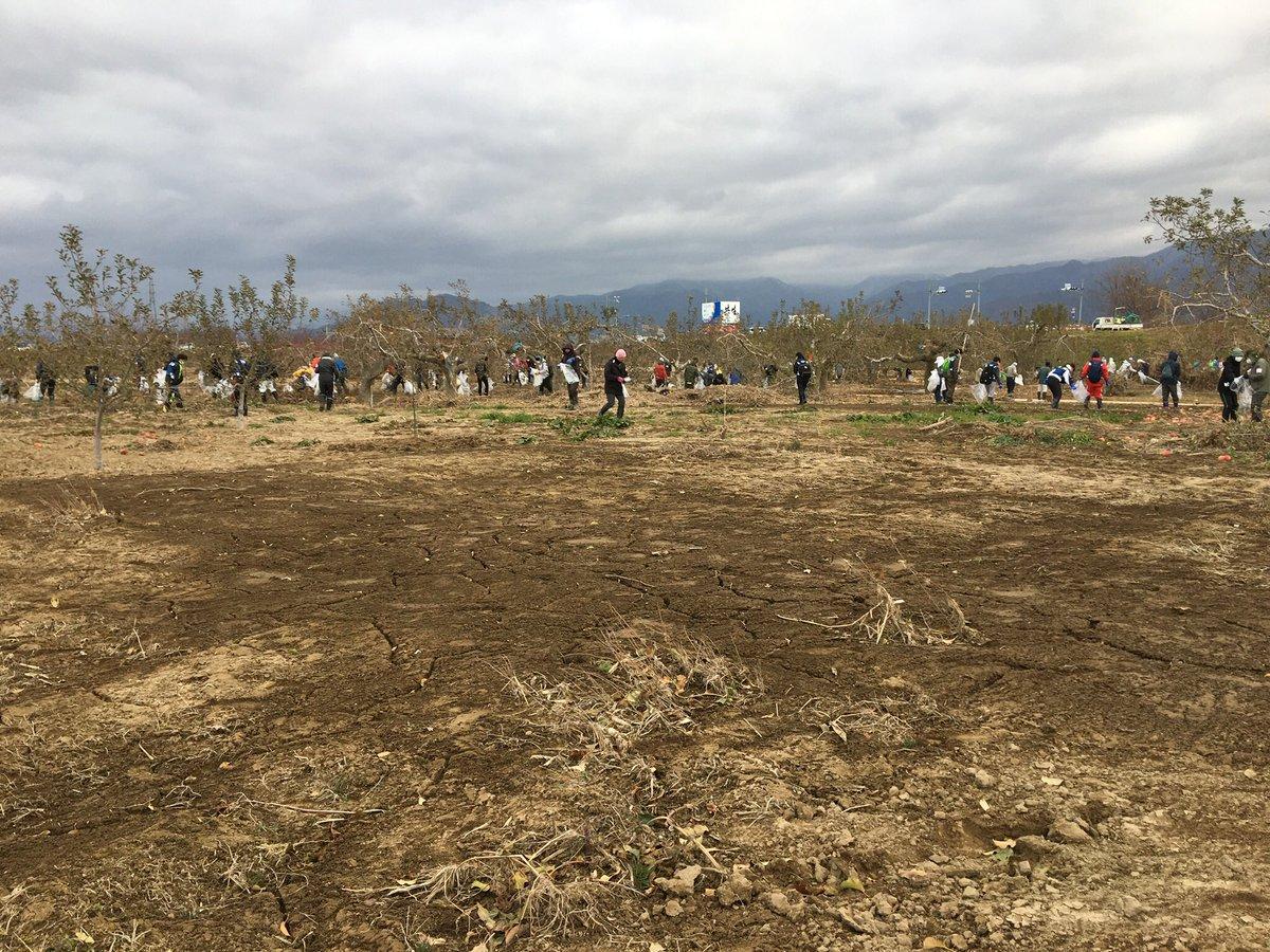 test ツイッターメディア - 昨年の12月中旬に 千曲川の河川敷の清掃したとき  燃えるゴミ袋と 燃えないゴミ袋を持って  てくてく歩いてゴミ拾い💨  #長野 #須坂 #千曲川 #台風19号 https://t.co/QTUlF0907y