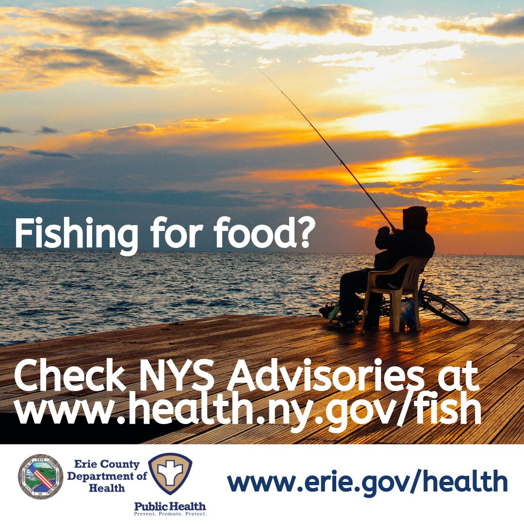 Saturday, September 26 is a Free Fishing Day for New York State. If you plan to eat what you catch, take note of these NYS fish advisories and health advice:   @ErieCoDEP @NYSDEC