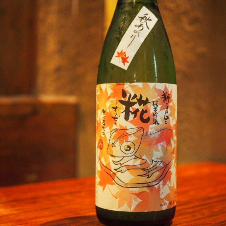 test ツイッターメディア - 獅子の里 純米吟醸 オリゼー 無濾過生酒 秋あがり  カメレオンのラベルはお料理との相性の幅が広く、料理によってお酒の表情が変わっていくという意味合いだそうです。 穏やかでほんのりと香り、喉越し良くすっきりいただけます! #獅子の里 #オリゼー #カメレオン #神田日本酒 https://t.co/wqH2XbRArm