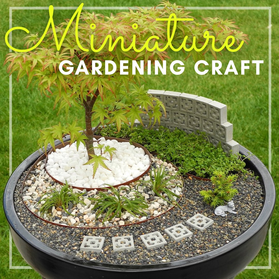 Join us on Thu, Oct 1 at 6:30pm and create a mini garden in a small container suitable for your desktop or front doorstep.  Supplies will be provided and available for pick up on Sat, Sep 26, from 11am - 1pm at the Downtown Library.  More info