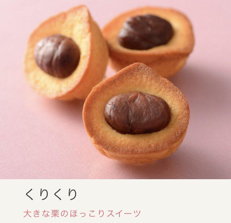 test ツイッターメディア - お土産で頂いたうなぎパイに同梱されてた商品広告見て「アマゾンカカオもなか」が気になって春華堂さんのホームページ見に行ったら他にもめちゃくちゃかわいくて美味しそうなお菓子や気になる商品あって気になってる(日本語) うなぎパイのフィギュアとは😂😂😂 https://t.co/DyVI86Qwni https://t.co/GulW93eMvq