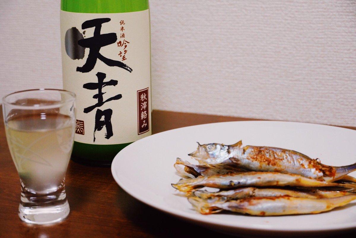 test ツイッターメディア - 茅ヶ崎に行ったので熊澤酒造の日本酒を買ってきました笑 天青の秋おりがらみ!! 日本酒の季節も変わっていました🍶🍁 美味い!!  #キリトリセカイ #料理好きな人と繋がりたい https://t.co/U2bat8vbGT