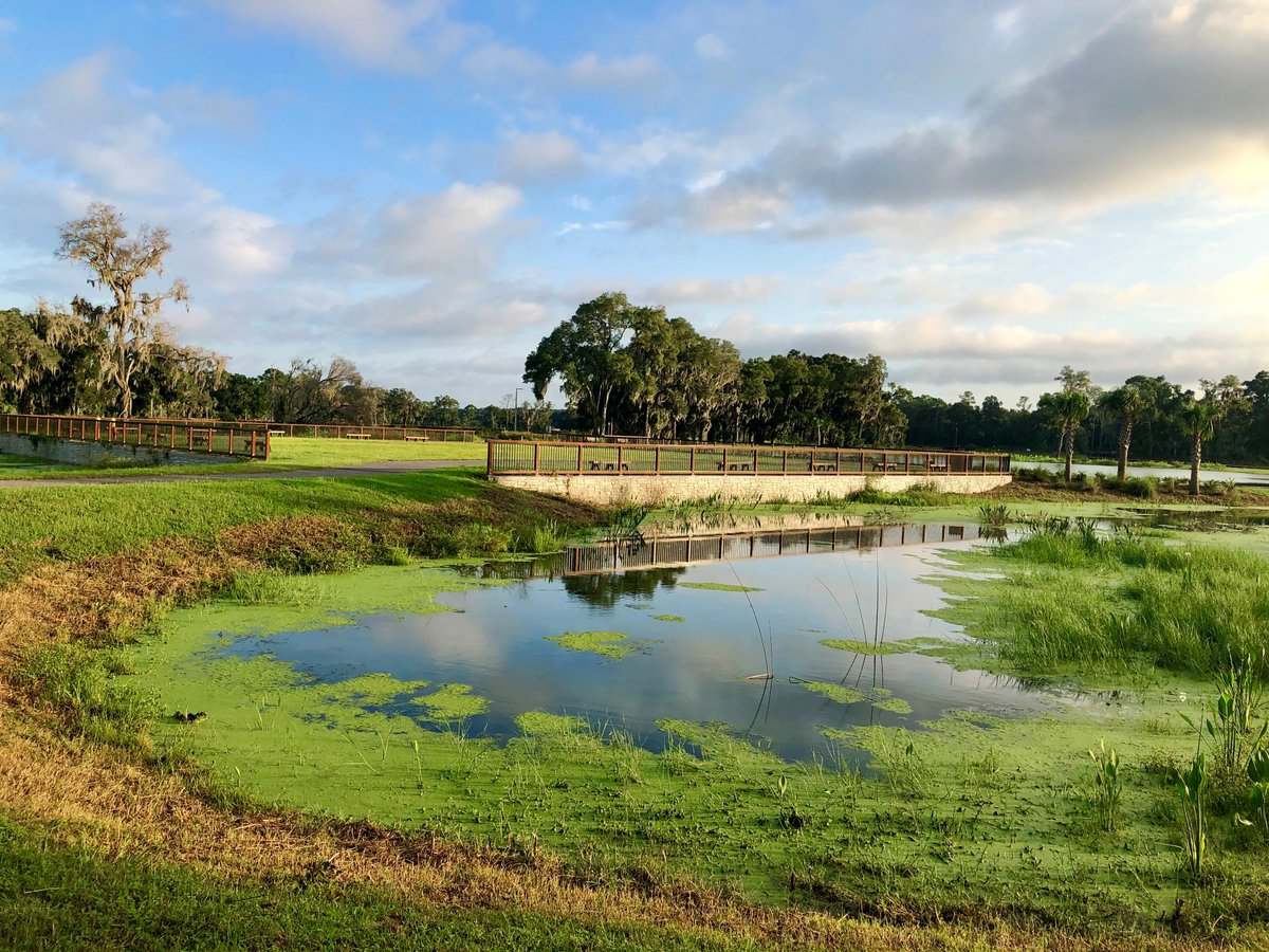The #Ocala Wetland Recharge Park, 2105 NW 21st St., officially opens today after the project broke ground in June 2018. It features educational kiosks, two and a half miles of walking trails and scenic boardwalks. #OWRP #OcalaWaterResources #CityofOcala
