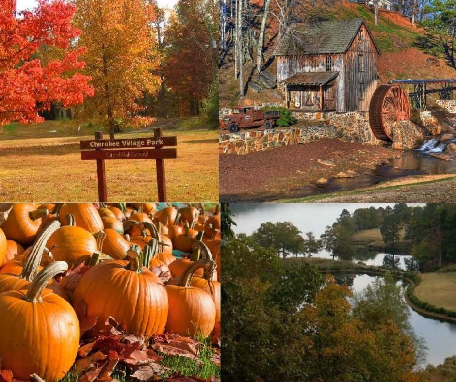 It's officially fall y'all! Who else is excited about the fall season in Cherokee?  🙋♀️ #CherokeeGA #CherokeeCounty