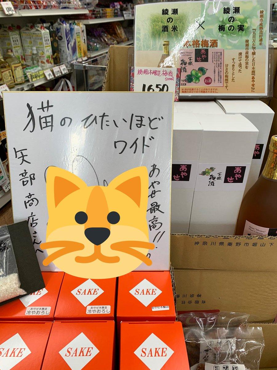 test ツイッターメディア - 猫ひた巡り楽しかった! 神奈川、狭いけど広いねwww お酒は、あやせといづみ橋と合わせて4本も買ってしまった🤭たのしみ🍶 光かかしは、もはやホラー👻 https://t.co/xUpEAvAxsu https://t.co/HTisPWtd4t