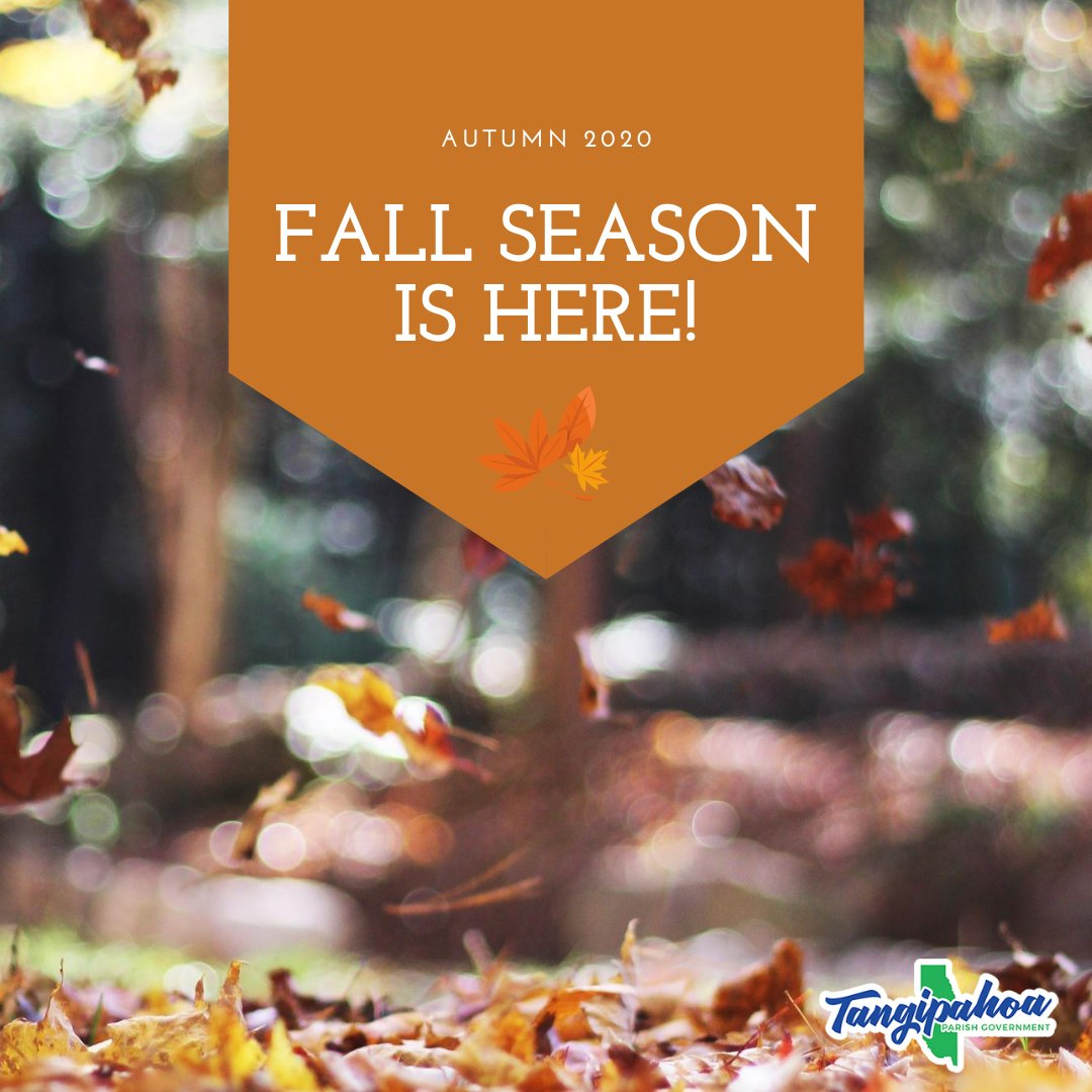It's officially the first day of Autumn! 🍁 🍂  What is your favorite thing to do in Tangi this time of year? #HelloFall
