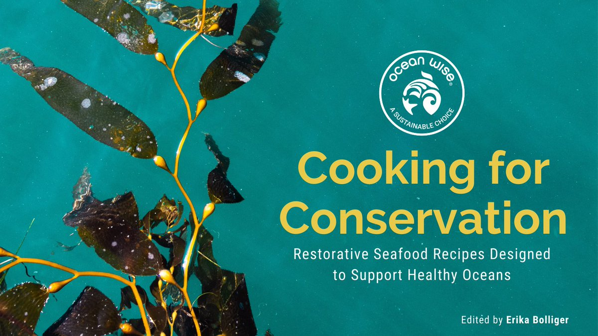 *NEW* Digital @OceanWiseSeafd Cookbook Available Now!   Actively contribute to healthy oceans with #CookingForConservation, a cookbook featuring restorative seafood recipes from partners across our program!  Learn more and get your copy: