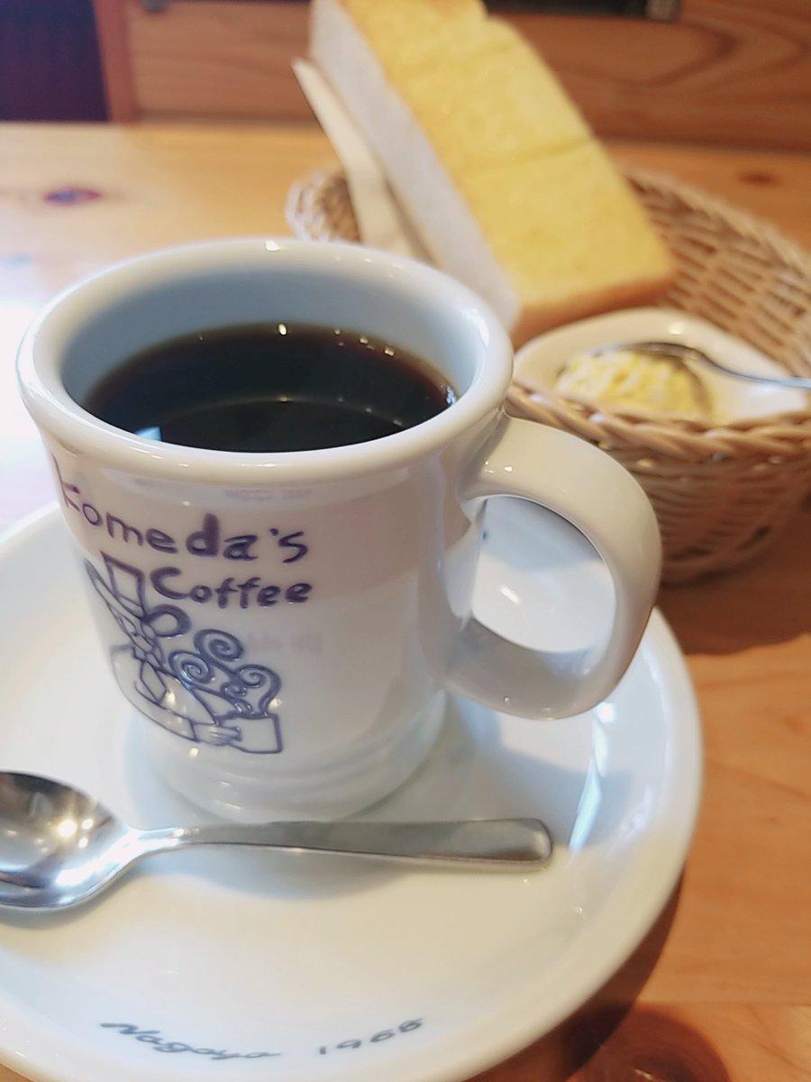 test ツイッターメディア - そういえば、刈谷では朝ご飯にコメダ珈琲でトーストとエビかつパンを食べました~☕  都内でもたまに食べますが、コメダ珈琲のかつパンのボリュームには毎回驚く…! https://t.co/WH53YW5hem