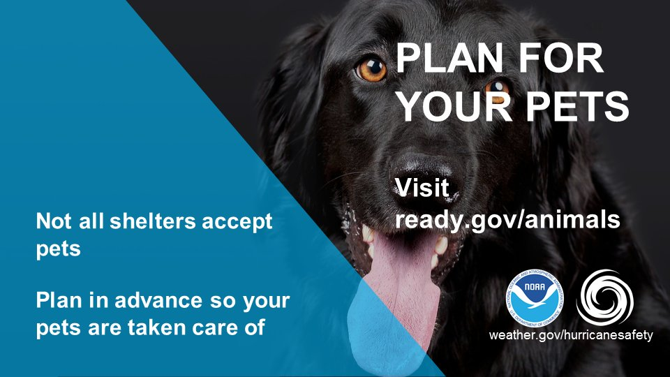 Whether you decide to stay put in an emergency or evacuate to a safer location, you will need to make plans in advance for your pets.