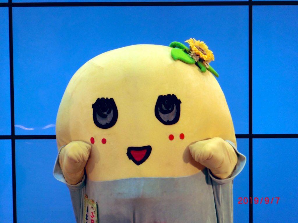 test ツイッターメディア - @runa_uk @qyukari あ(。 ̄ө ̄。)っ🌕  ぬかぴーぴー♡ おはまるーヾ(。゜▽゜)ノ仙台銘菓萩の月に似てるって言われたなっしー♪ 美味しそうって事なっしなー♪  ほんまや!無事故無難に行きまする。 タタタッ((((((..◉▼◉)ノキシャー  (🕊 ̄ө ̄🕊)ピースLOVE❤️  (。゜▽゜)ねてぇっす。 https://t.co/0DHDGxUSrG