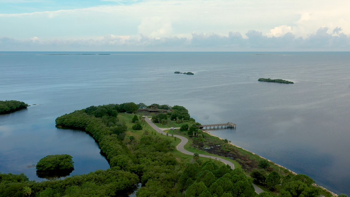 There is even more of Wall Springs Park to enjoy! The Wall Springs Park Coastal Addition adds 125 extra acres to the existing 84-acre facility. The expansion adds a considerable amount natural areas & amenities, giving visitors more recreational options. #PinellasPC #WallSprings