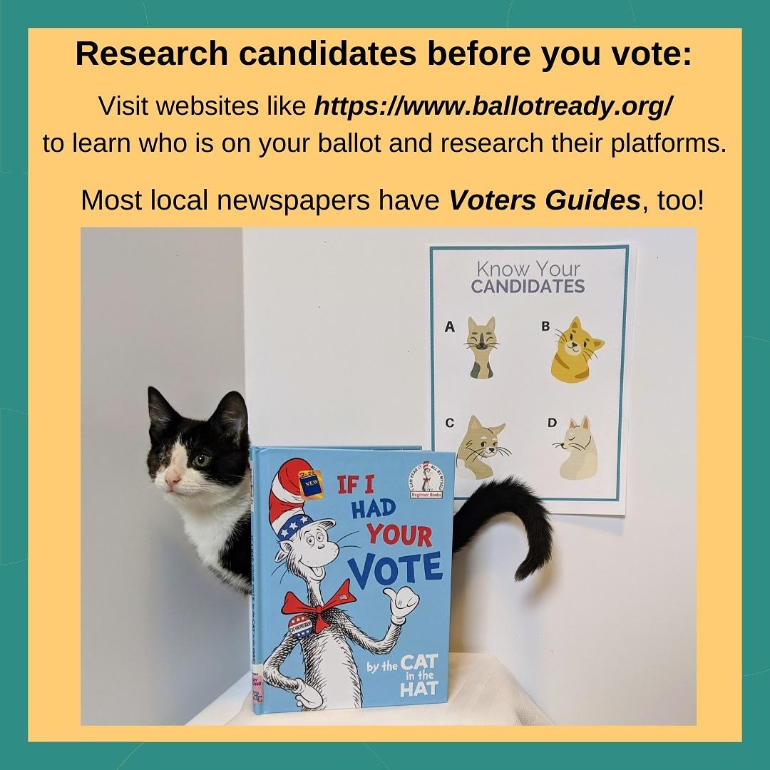 #Vote #BeInformed