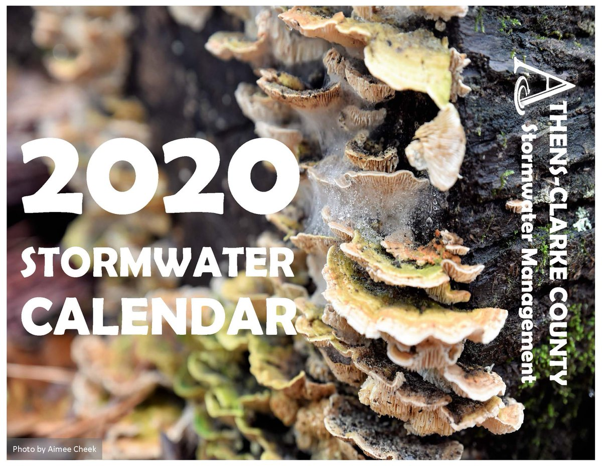 This week is the last week to submit photos to @ACCstormwater for potential inclusion in their 2021 Stormwater Calendar. Email your water-themed photos to stormwater@accgov.com with the name of the photographer and a brief description of where, when, and why it was taken.