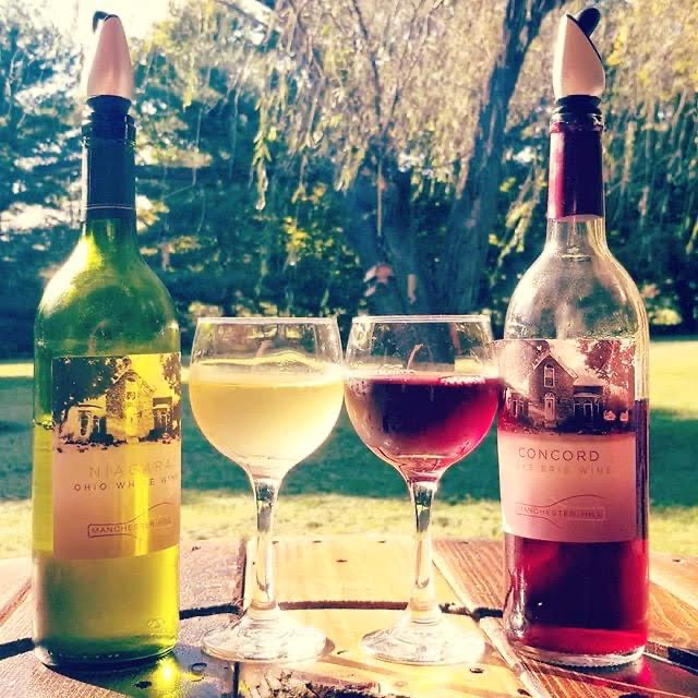 Manchester Hill Winery is a great place to spend a fall afternoon!