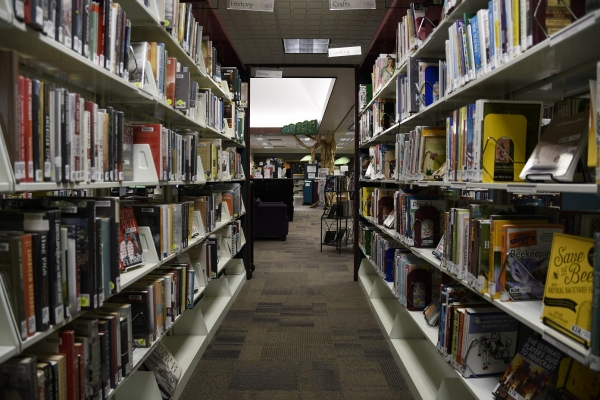 Kent District Library Launches SPARK Collection