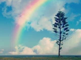 test ツイッターメディア - ☆今日のハピメ☆   雨が降るから 虹に会える。   悲しい時には 泣いてもいーんだよ。 https://t.co/AqPV4tvuSK
