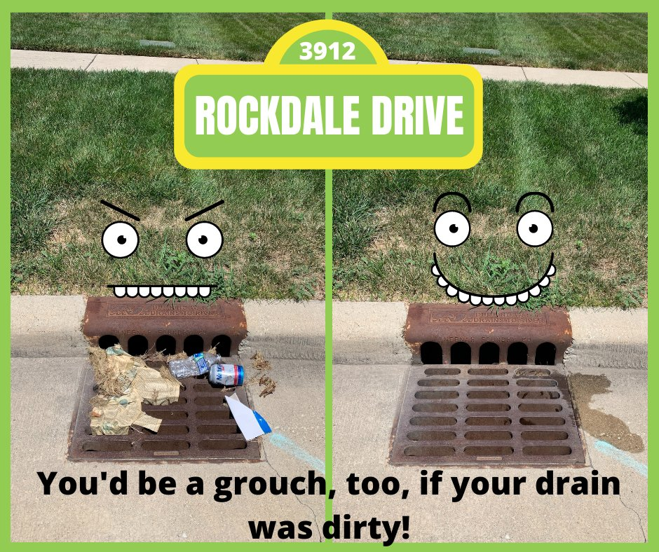 This Adopt A Drain Friday, meet Oscar, a grouchy little drain on Rockdale Drive.  Learn more about Oscar and how you can help put him in a good mood...