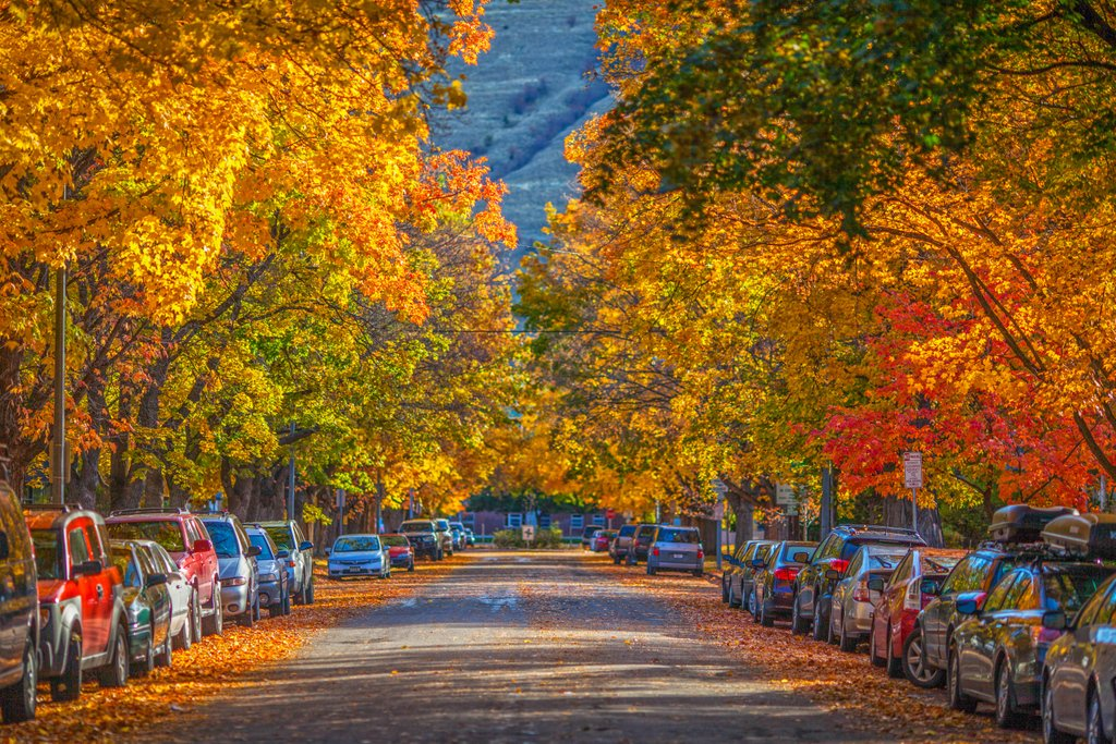 Won't be long until we're surrounded by fall magic in Missoula. 🍂 #VisitMissoula #Missoula #TheresThisPlace
