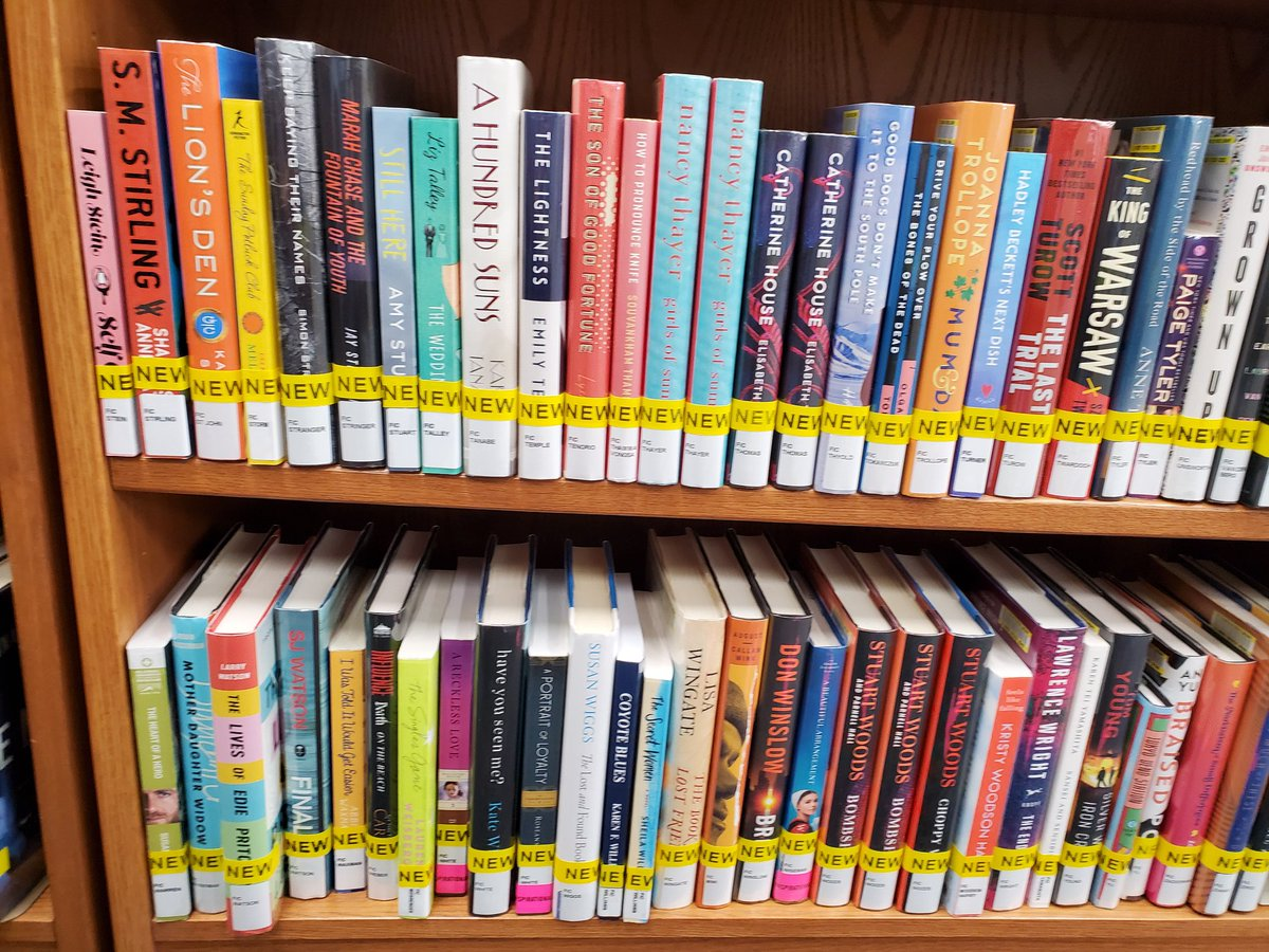 "If you'd like to ""browse"" some new books from the comfort of home, we have a shelfie for you!"