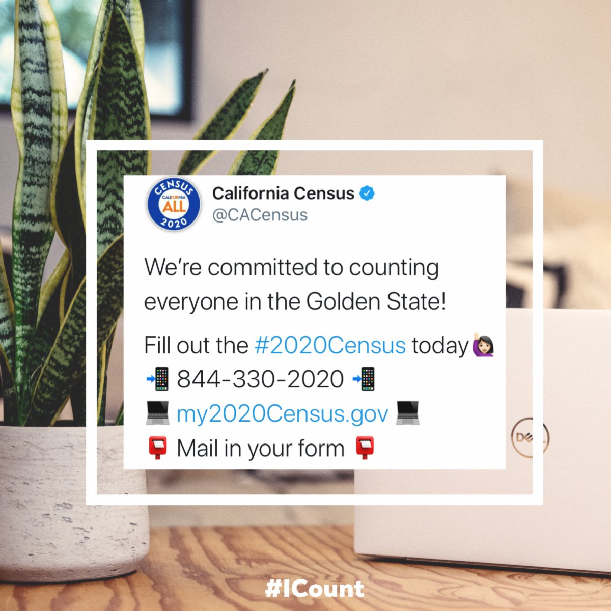 ¡Complete el Censo hoy! ¡Vaya a  ahora! Fill out the Census today! Go to  now! Link in Bio.  @CACompleteCount @CACensus #2020Census #CompleteCount #ICount #CACensus2020 #CACompleteCount #EveryoneCounts