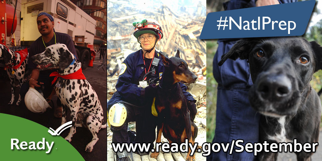 Update your pet's emergency kit this week by adding extra pet food and water to your grocery list. #BeReady #NatlPrep