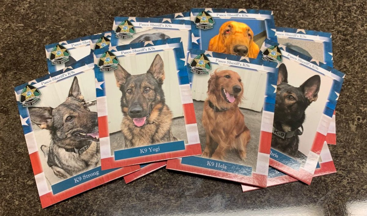 K9 cards along with other PSO items are available at our Pasco Sheriff's Office Charity Store! Check it out!