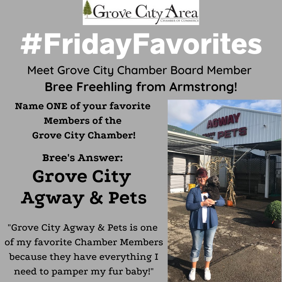 It is time for another of our #FridayFavorites where you get to meet one of our wonderful Chamber Board Members and you get to learn who ONE of their favorite Chamber Members is and why! This week you get to meet Bree Freehling from Armstrong & her fur baby Crosby!