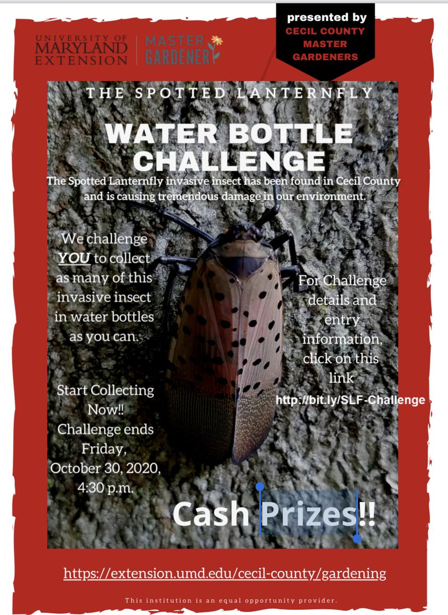 The UME Cecil County Master Gardeners is offering a Spotted Lanternfly Water Bottle Challenge.   #SpottedLanternFly @UMdExtension #CecilCoMasterGardeners @CecilCoGov