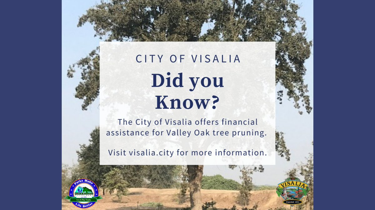The City of Visalia offers financial assistance for Valley Oak Tree pruning for low-income homeowners. For information, guidelines & application visit  or call (559) 713-4020. #visalia #trees #oak #oaktree #oaktrees #oridnance #pruning #property #home