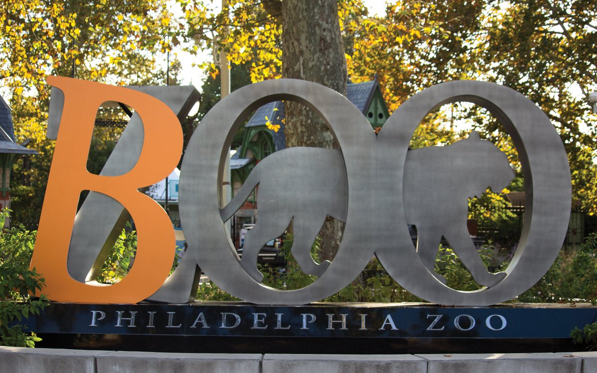 .@PhillyZoo's annual #BooAtTheZooPhilly returns for three weekends in a row this October, presenting kids with a fun, slightly spooky experience as they navigate the zoo in costume.  Timed tickets are available beginning October 1 ➡   👻🐯 #UnstoppablePHL