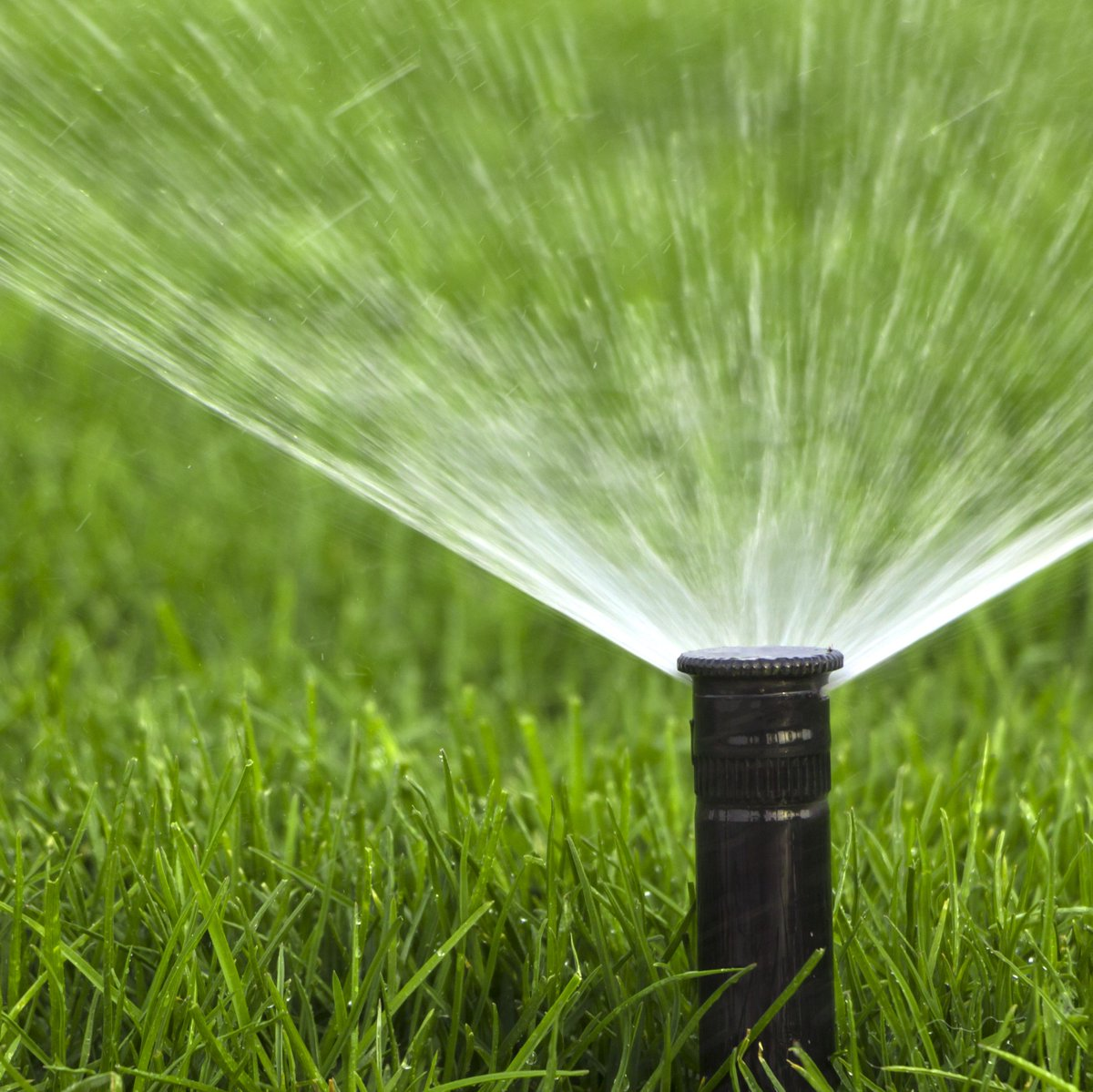 Does your sprinkler system need basic repairs? Ontario residents can receive assistance with sprinkler repairs at no cost.  Visit  for more information on what the program covers and contact OMUC at 909 395-2614 or email waterwise@ontarioca.gov to sign up.