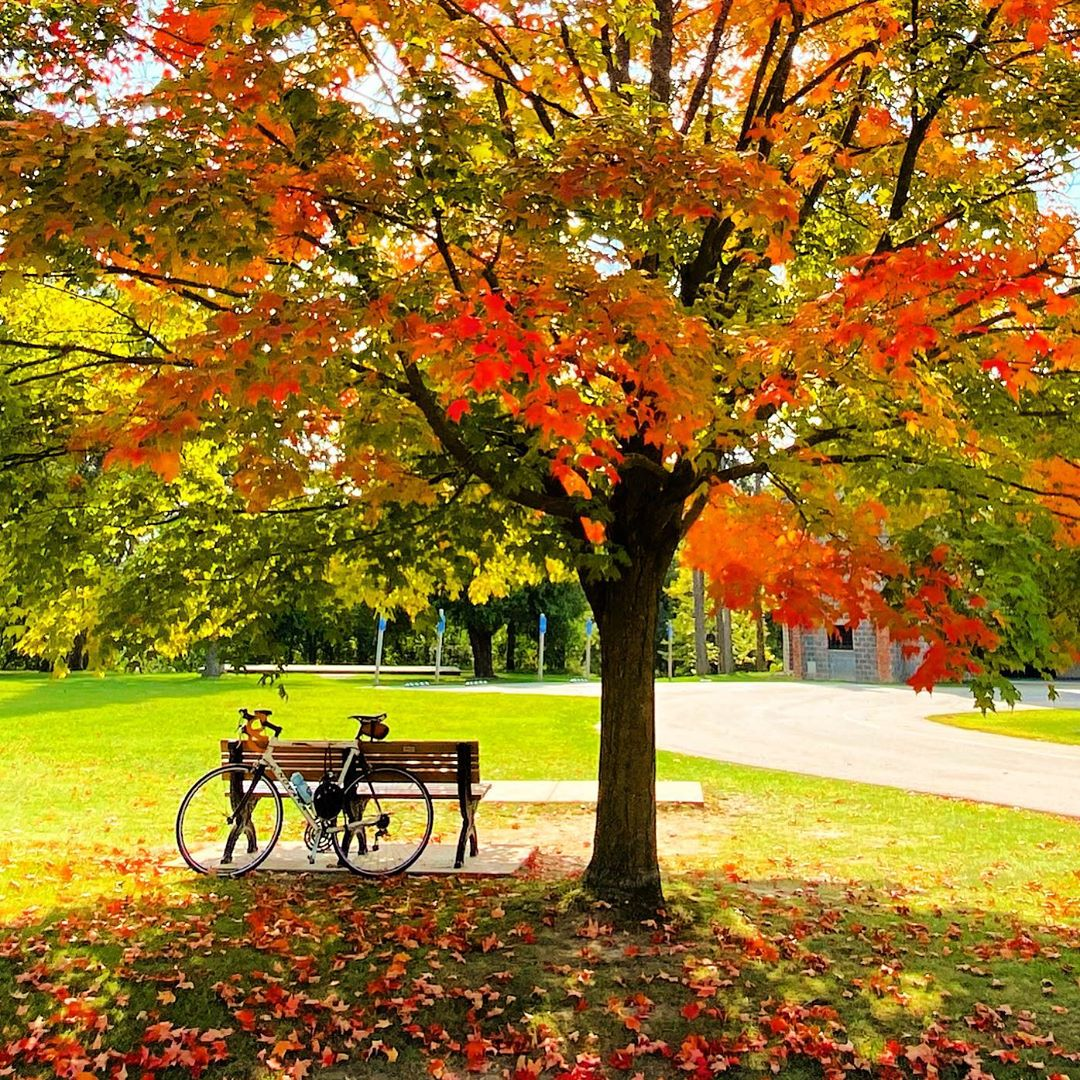 Fall biking goals!🚴 Thanks @michigan_mama for sharing this awesome shot from Bay Court Park in #IndependenceTwp. . . Use #OaklandCounty for a chance to be featured.
