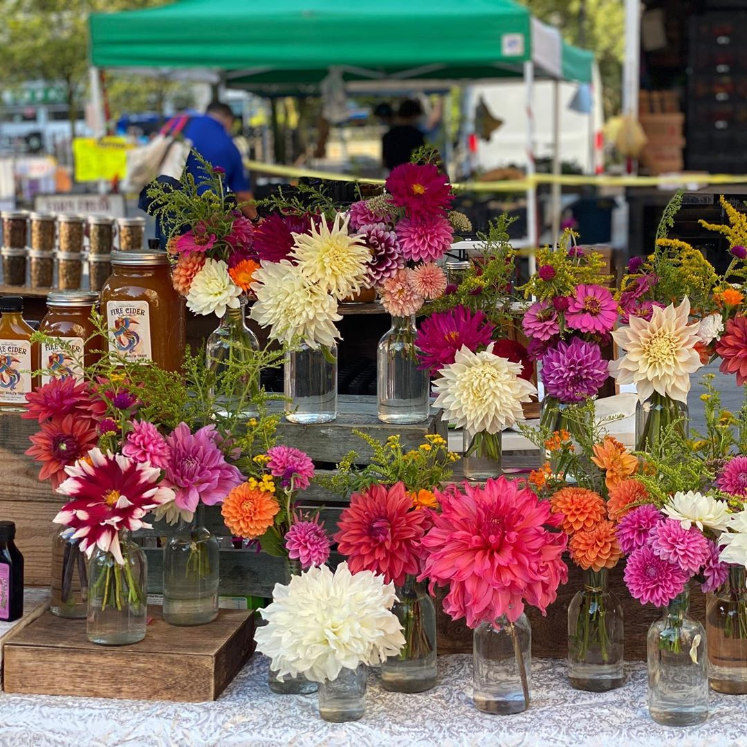 Studies show fresh-cut flowers in your home can contribute to happiness and health. Luckily, @TweefonteinH Farm in #NewPaltz have plenty to go around—including at  @UnSqGreenmarket in NYC. Stop by their booth, or better yet, visit them in New Paltz! 💐 🌺 🌼 🌷 #Seekforyourself