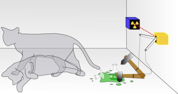 test Twitter Media - PHEV-debacle in de maak: kat in een doos of kat in de zak? https://t.co/KidvL8bYR3 https://t.co/eAefqjiLXV