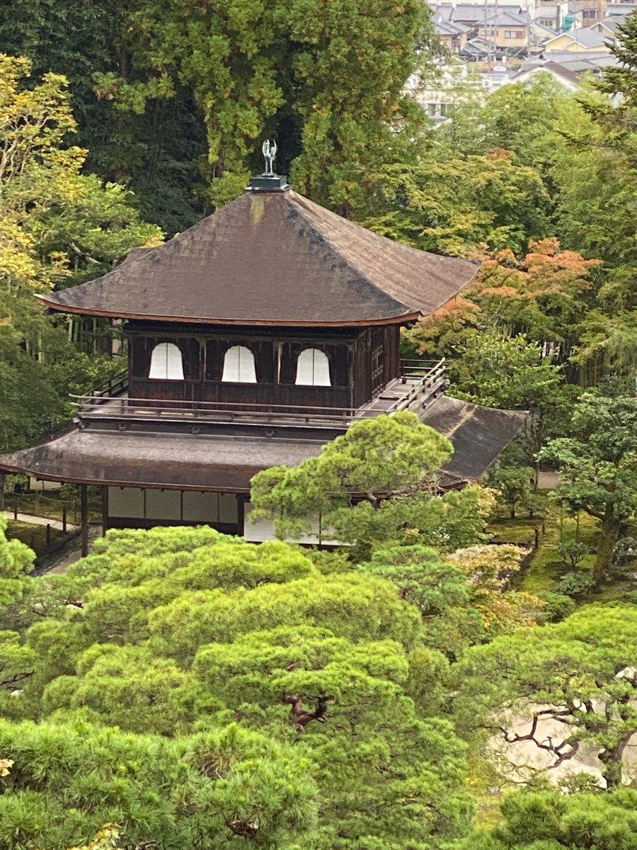 test ツイッターメディア - 高台寺の後は世界遺産銀閣寺へ。最後は抹茶と和三盆の菓子をいただきました。 https://t.co/DTDpG8xoZN