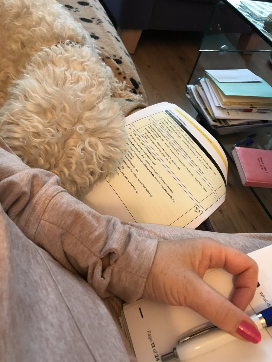 test Twitter Media - Daisy is helping Miss Parkes mark Y6 Reading tests. https://t.co/2VCNT7IRf5