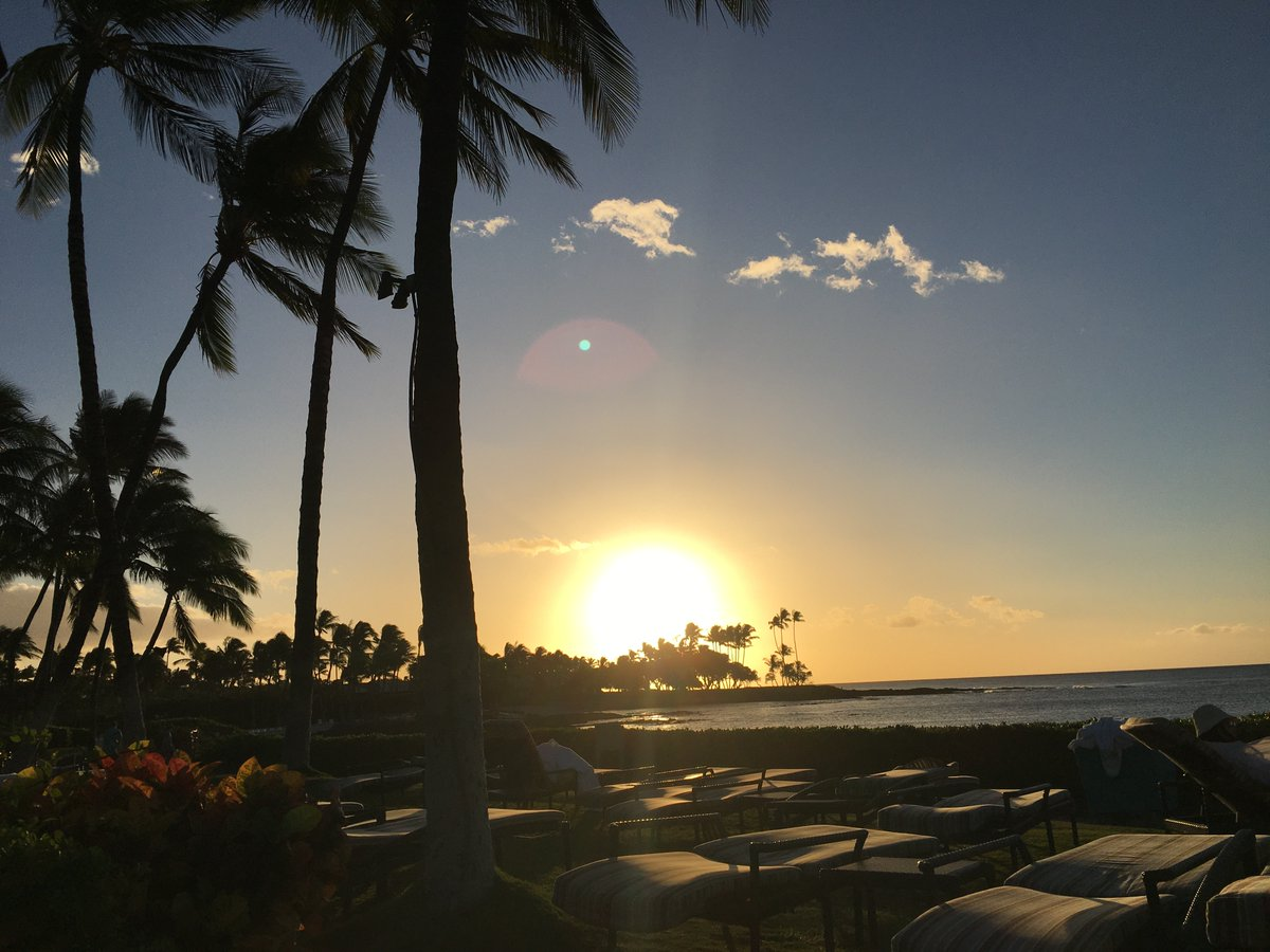 test Twitter Media - Your aloha Friday:  The 2021 Pacific Symposium on Biocomputing (PSB) proceedings are out! https://t.co/OuQq1sxG1q   #psb21 https://t.co/cUW5nI0Lap