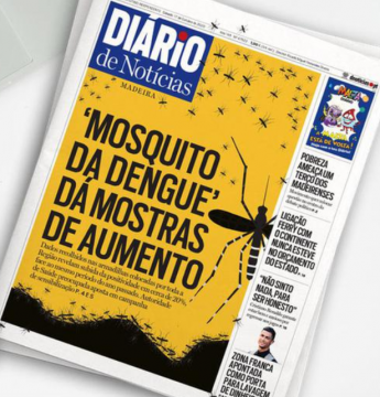 Dengue mosquito on the increase  Data shows 20% increase over last year  The Diario headlines today that the mosquito that carries dengue fever is on the increase. Traps set to catch and monitor the aedes aegypti mosquito are showing an increase of 20% compared to the s... https://t.co/Ip4npaftZ8