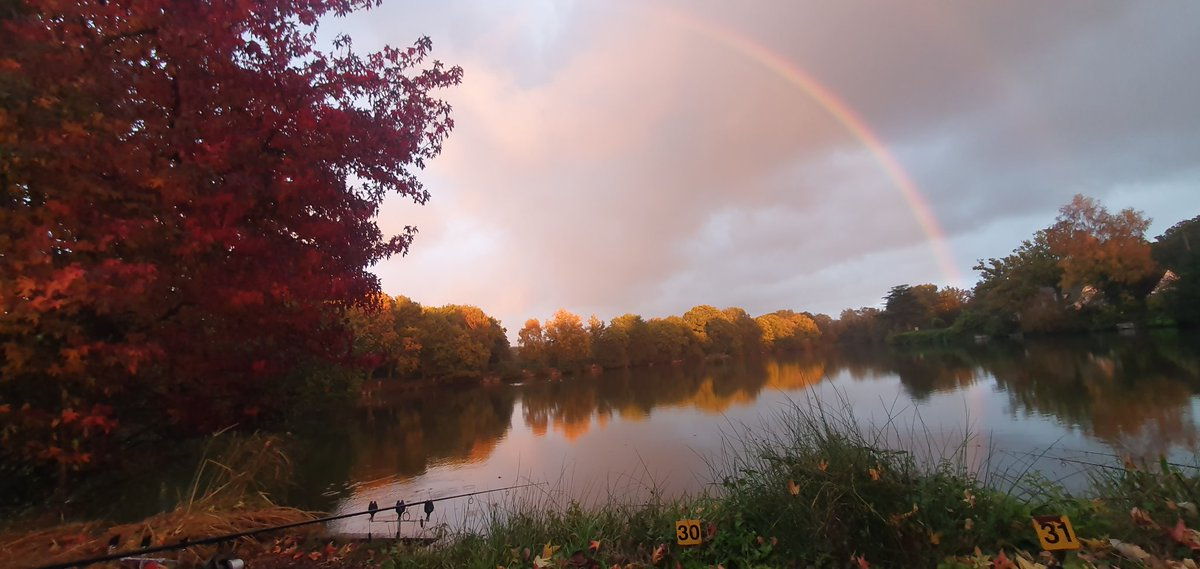 This is what fishing is all about beautiful England  #england #mainline<b>Bait</b>s #carpfishing htt