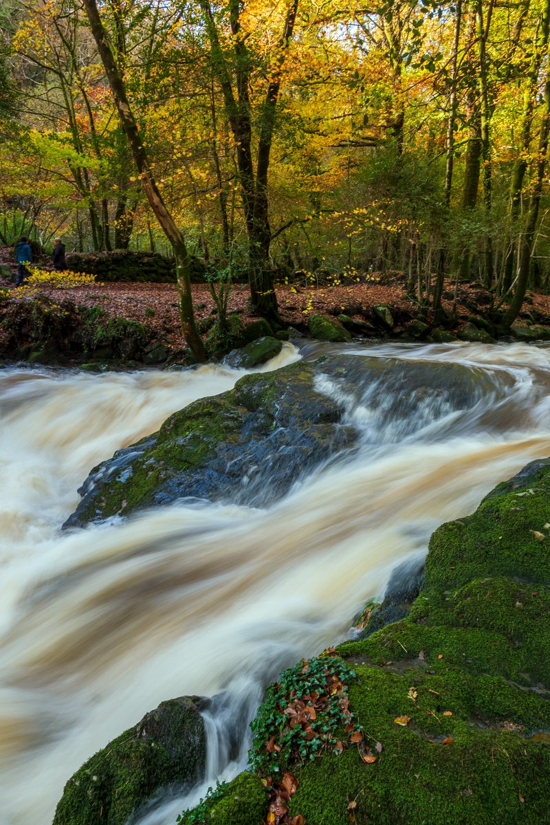 test Twitter Media - R I V E R  E R M E Torrential, autumnal, rainfall draining from Dartmoor, swells the River Erme.  #Ivybridge #Dartmoor #Devon #SouthDevon #VisitDevon #LoveDevon #ExploreDevon #SWIsBest #River #Autumn #Woods https://t.co/BkxSwnKrhu