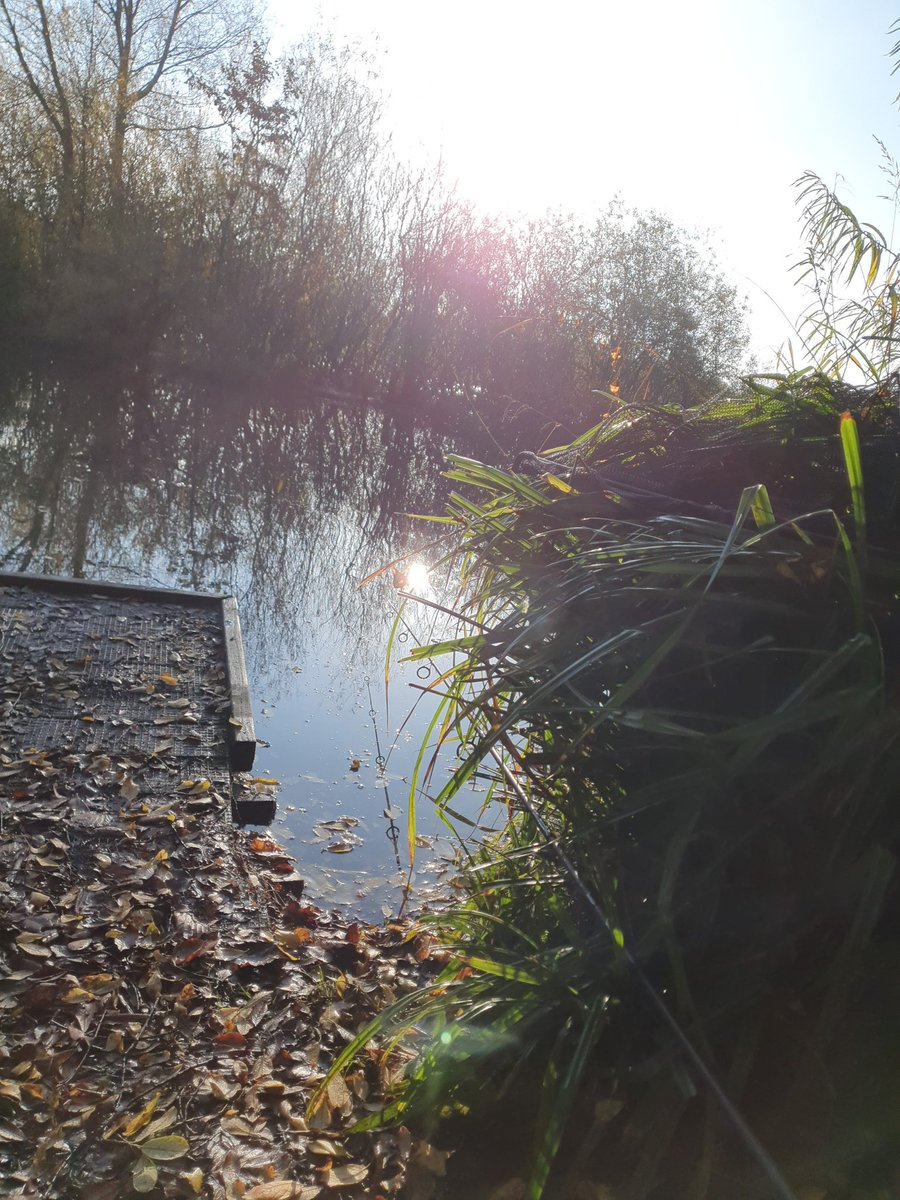 48 hour sesh <b>End</b>ing in a blank. Moved to a stalking spot to see what happens... #carpfishing