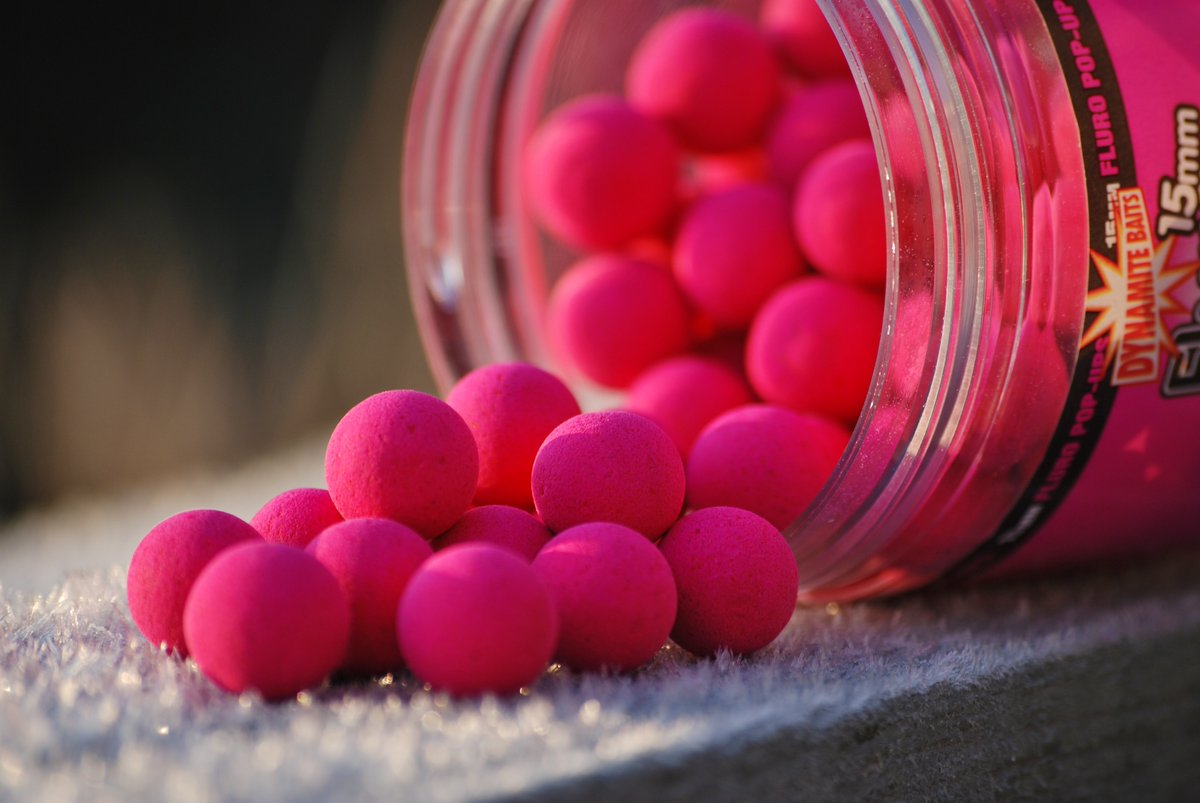 Who likes a bright hookbait in winter?   #MulberryFlorentine #DynamiteBaits #<b>Popups</b> #carpfish