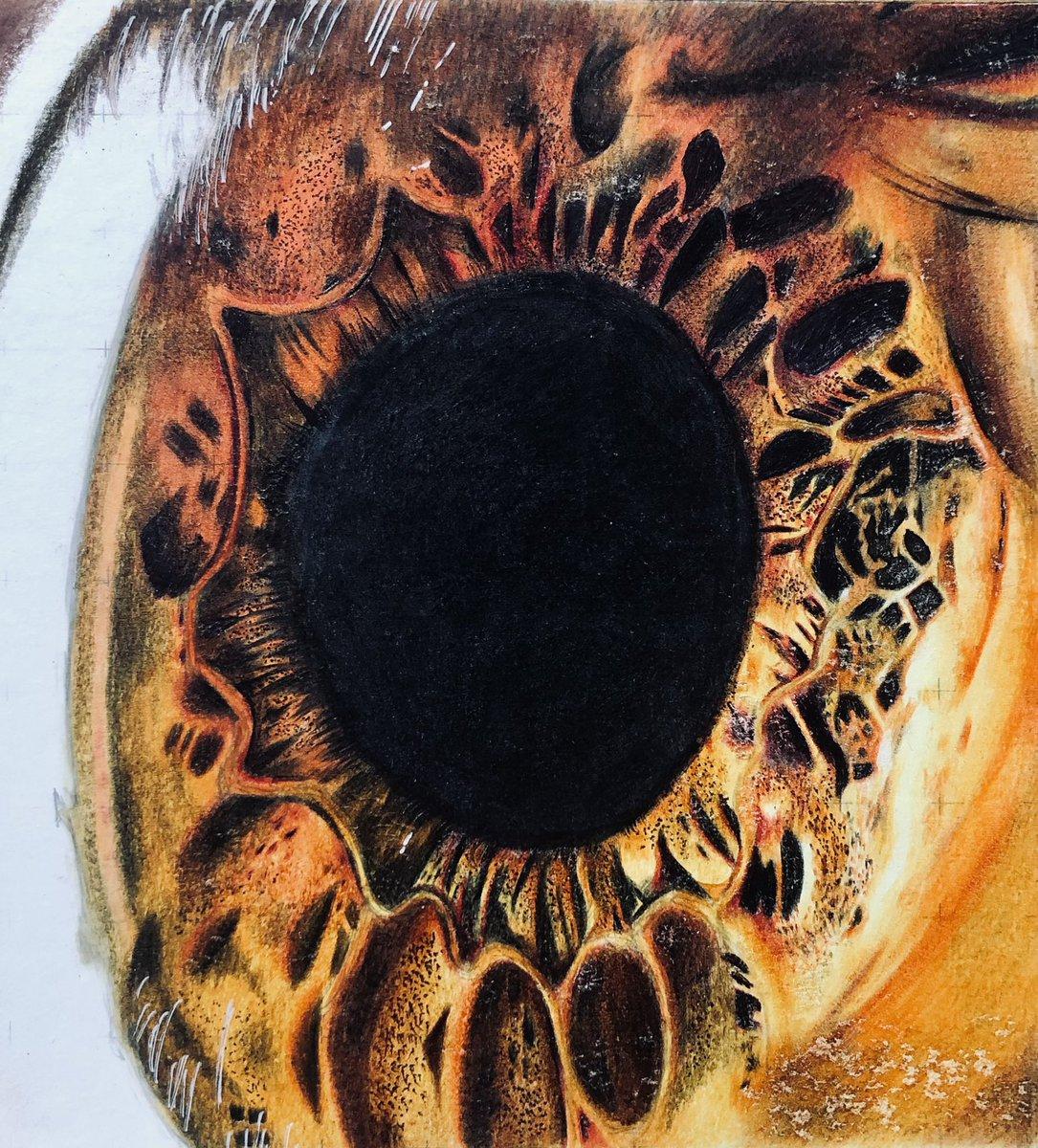 test ツイッターメディア - 色鉛筆で、医療で見た眼球を描きました! 沢山の方に見て頂けたら嬉しいです!!!!!!!!!!!!!!ア゙ア゙ア゙ア゙ア゙ ※閲覧注意です🙇♀️💦🙏  #色鉛筆画 #眼球 https://t.co/2p43fKWsFb